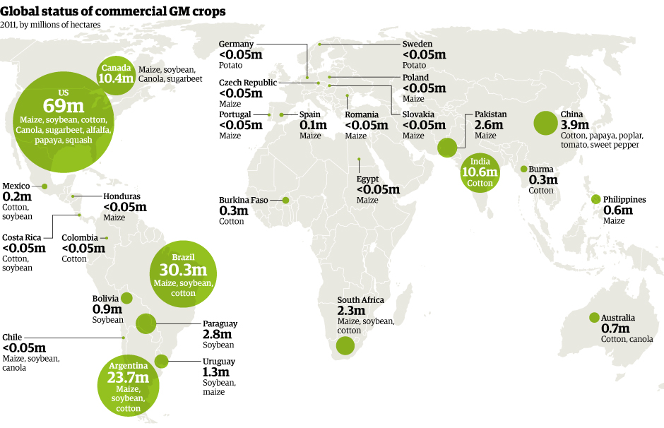 world gm crops